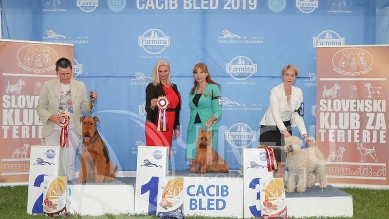 CACIB Bled 2019